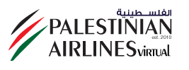 Palestinian Airline